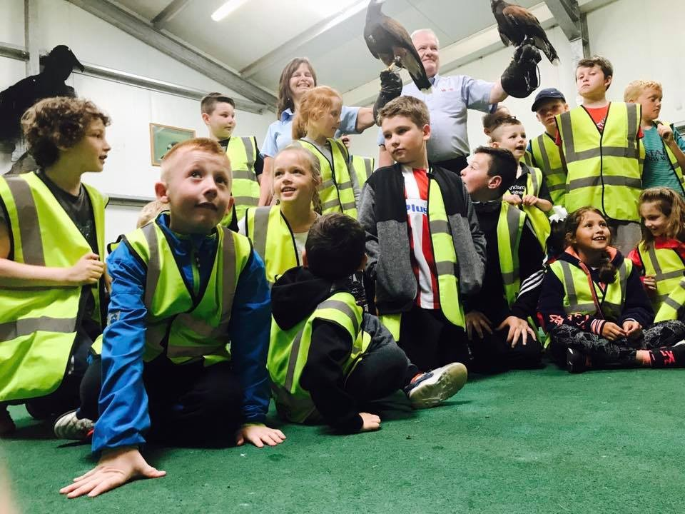Wilson's Flooring Specialists from Wirral with iPLANit KIDS