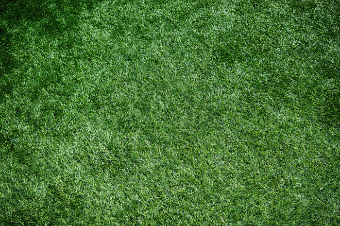 artificial-turf-1711556_1920.jpg